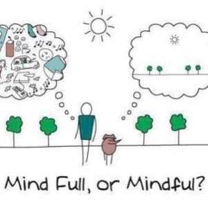 Mindfulness-voor-bij-therapie-mindfulness-300x300